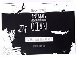 MAGNIFICENT ANIMALS ABOVE AND BELOW THE OCEAN FLASHCARDS