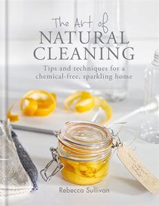 ART OF NATURAL CLEANING