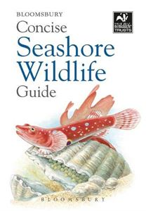 BLOOMSBURY CONCISE SEASHORE WILDLIFE GUIDE (NEW)