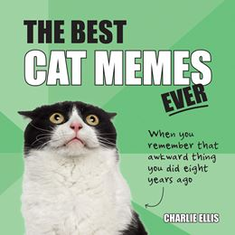 BEST CAT MEMES EVER