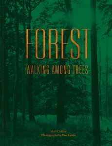 FOREST: WALKING AMONG TREES