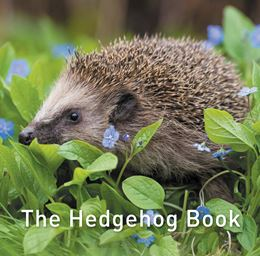 HEDGEHOG BOOK (GRAFFEG)
